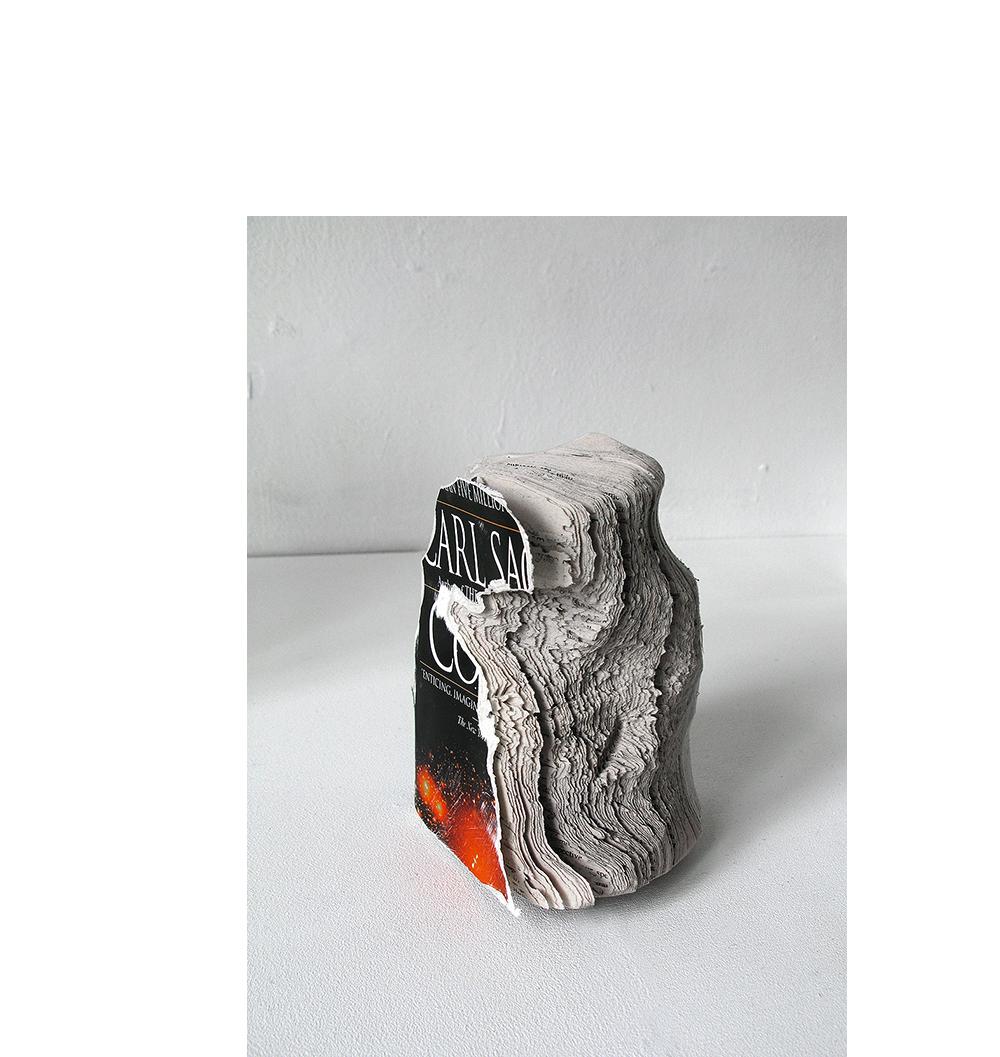 nicolas-lamas-10