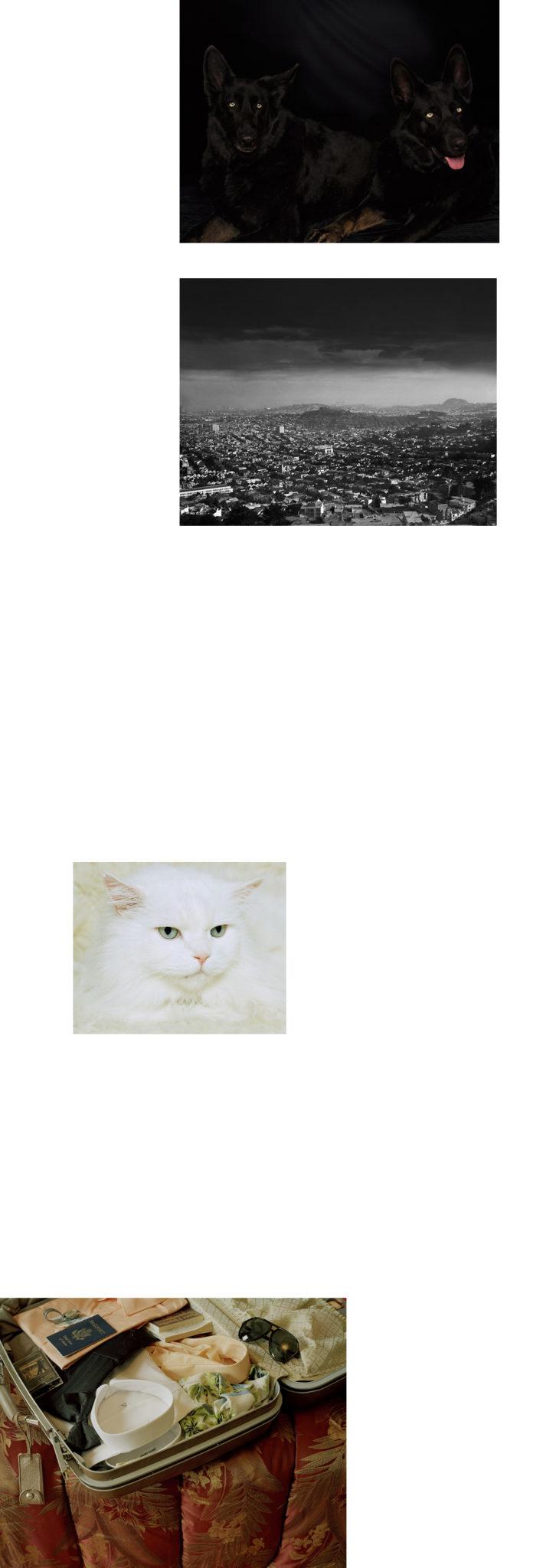michele-abeles-11