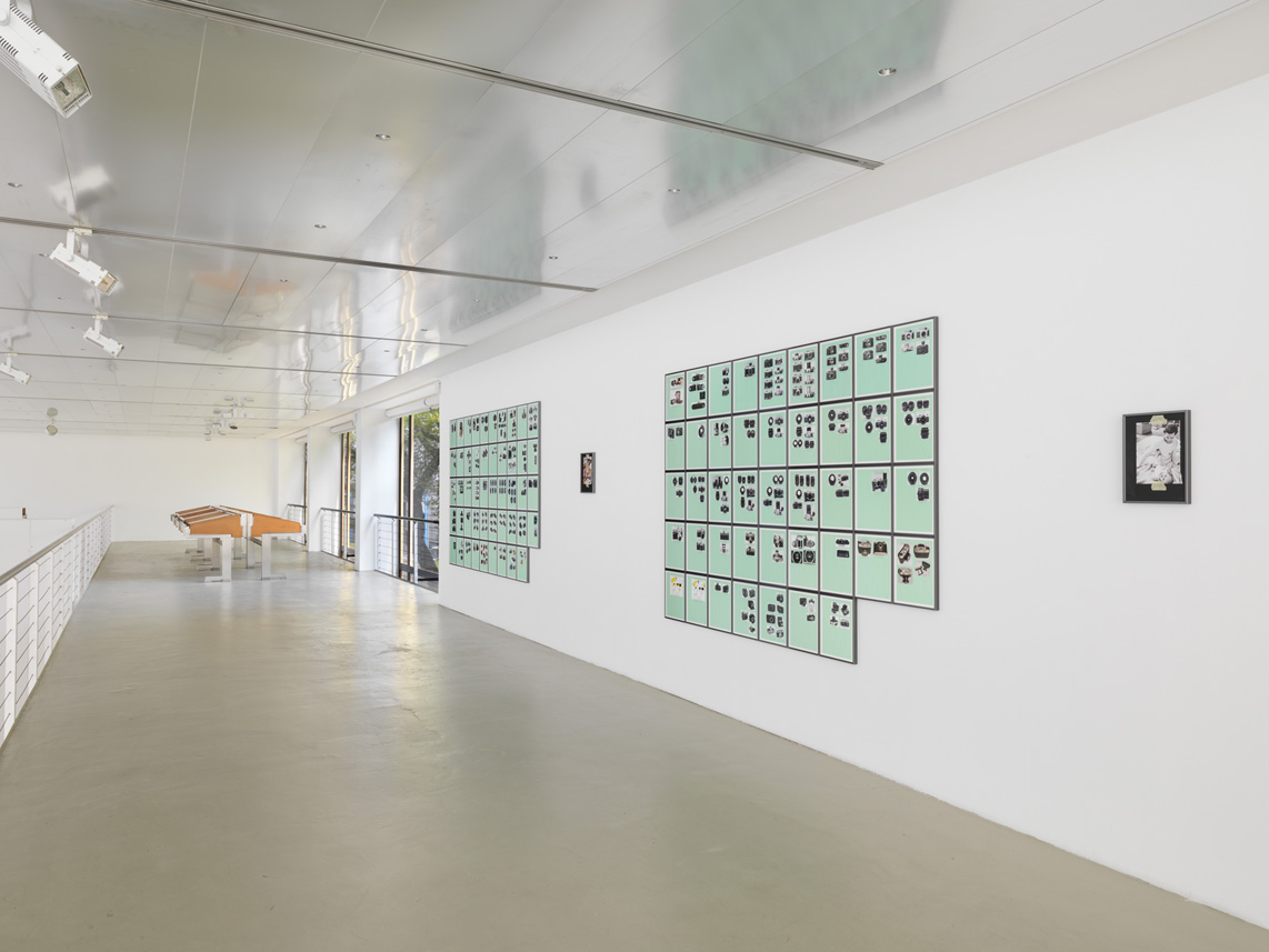 Williams_Installation-view_18